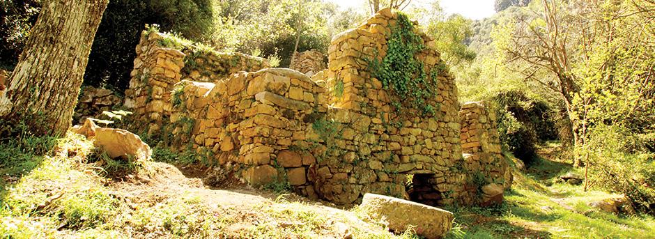 Moulin du sentier des moulins de Cuttoli-Corticchiato