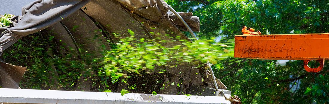 broyage de déchets verts
