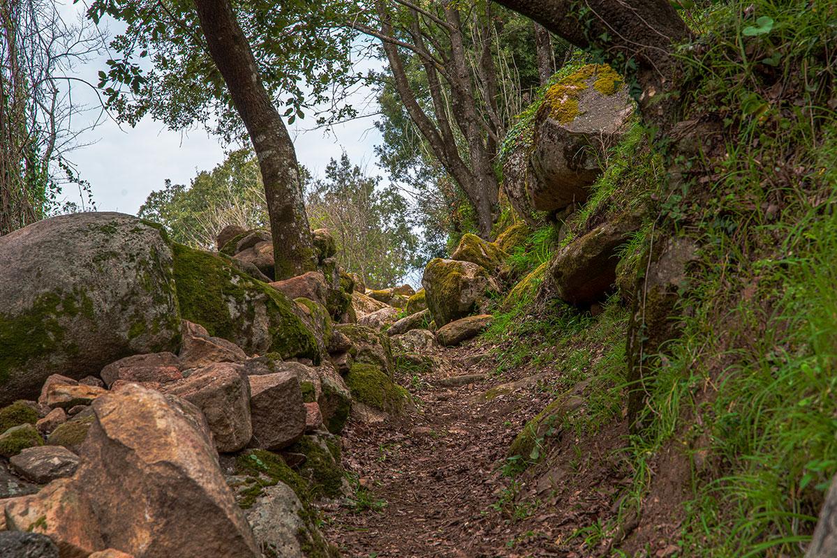 Illustration du sentier du patrimoine de Peri : anciens jardins